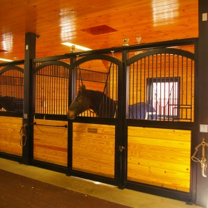 Horse in a Custom Stable Stall by Old Town Barns