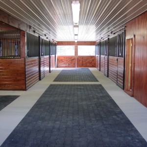 Custom Stable Interior with Corrugated White Steel Ceiling and an Aisle with Rubber Tiles in Concrete border