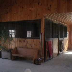 T Shaped center aisle barn with 1x8 premium eastern white pine paneling