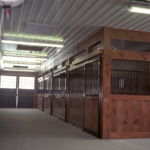 Custom Stalls with corrugated white steel on 11ft ceilings