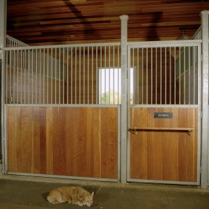 Custom Stable Stall From with Galvanized Steel and 2x6 Cherry Wood Paneling