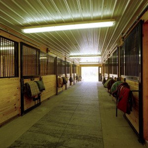 Custom Stable Interior with a Center aisle barn and white corrugated steel ceiling