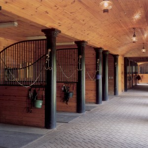 10x12 Grooming Stalls with Curved Partition Grills and 4x8 concrete pavers for aisle surface