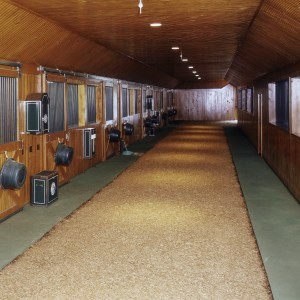 Custom Stable with 30in wide rubber clad apron and a riding surface on the aisle.