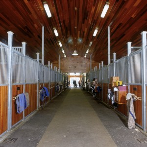 24 Stall Aisle with Galvanized steel stall fronts and cherry wood panels in a Custom Stable
