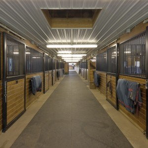 12x12 standard stall front with 12ft center aisle that has a corrugated white steel ceiling and a hay drop