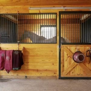 A horse in a custom stall