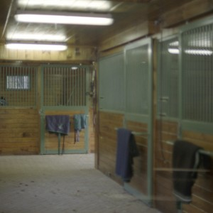 Interior of a Custom Stable by Old Town Barns