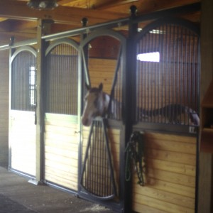 Horse in a Stable Stall of a Custom Stable by Old Town Barns