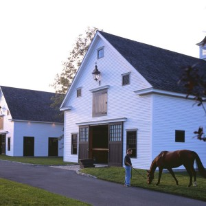 A horse in front of a white stable