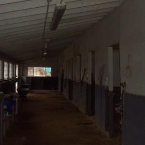 Dark Area of the Barn Before the Barn Restoration at Hunter Moon Farm