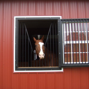 stall widow open in a red barn with a horse looking out from it